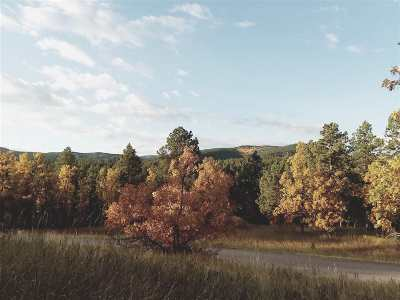 Deadwood Residential Lots & Land For Sale: Ticklegrass