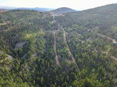 Deadwood, Lead Residential Lots & Land For Sale: Lost Camp