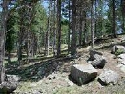 Pennington County Residential Lots & Land For Sale: Pine Mountain