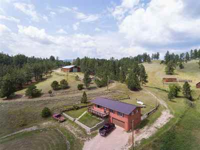 Pennington County Single Family Home For Sale: 11380 Slate Prairie Rd