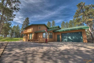 Sturgis Single Family Home For Sale: 9017 S Ridge