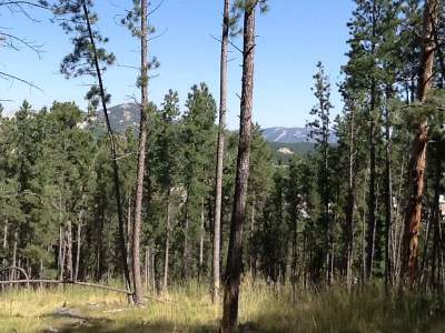 Custer Residential Lots & Land For Sale: Tbd Gordon