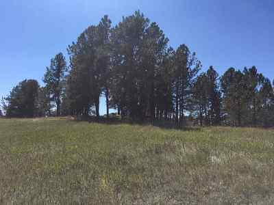 Custer Residential Lots & Land For Sale: Woodford