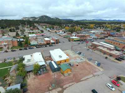 Custer Commercial For Sale: 444 Mt. Rushmore