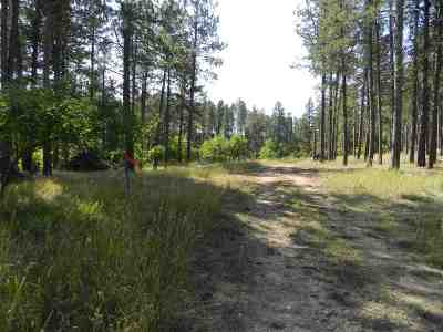 Sturgis Residential Lots & Land For Sale: Tbd Storey