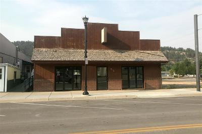 Sturgis Commercial For Sale: 915 E Main