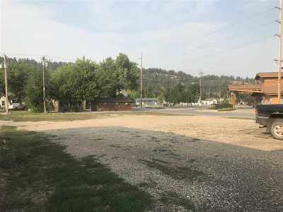 Sturgis Commercial For Sale: 901 And 915 E Main