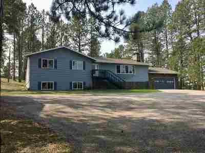 Custer Single Family Home For Sale: 25251 Stagg Road