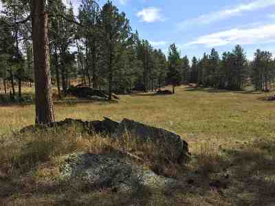 Custer Residential Lots & Land For Sale: Tbd Willow Creek Road