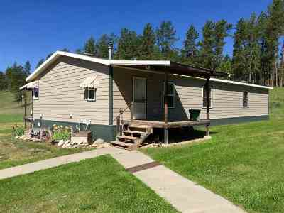 Custer Single Family Home For Sale: 11666 Pleasant Valley Road