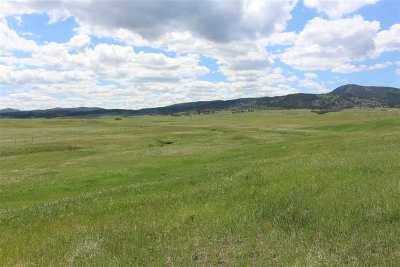 Spearfish SD Residential Lots & Land Under Contract-Dont Show: $169,300