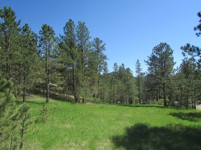 Pennington County Residential Lots & Land For Sale: 533 Pine Mountain