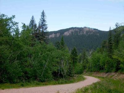 Spearfish SD Residential Lots & Land For Sale: $100,000