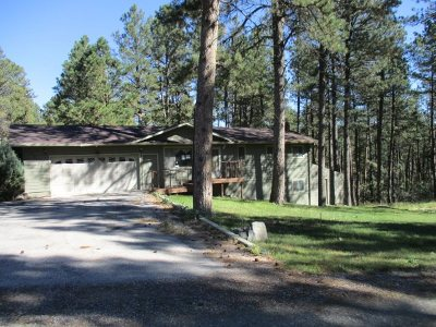 Rapid City Single Family Home For Sale: 13117 Timber Ln.