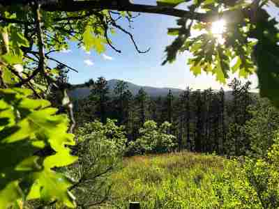 Spearfish SD Residential Lots & Land For Sale: $559,000