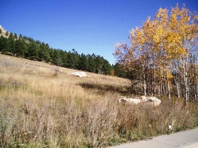 Deadwood, Lead Commercial For Sale: 796 Stage Run Rd