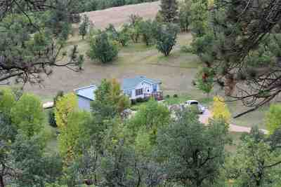 Sturgis Single Family Home For Sale: 20360 Avalanche