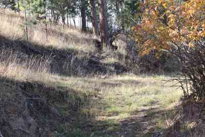 Deadwood, Lead Residential Lots & Land For Sale: 323b Grand