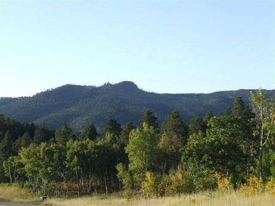Deadwood Residential Lots & Land For Sale: Lot 40 Tickelgrass