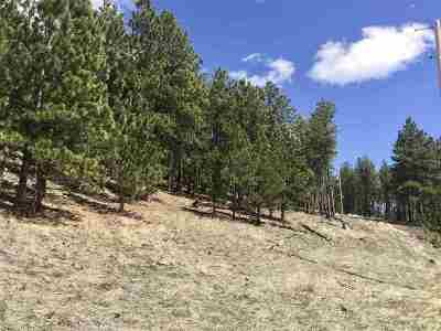 Custer Residential Lots & Land For Sale: Pay Dirt Pass