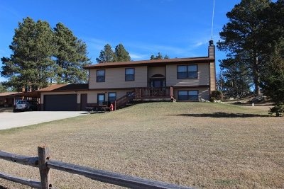 Custer Single Family Home For Sale: 25141 Granite Heights