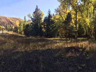 Commercial For Sale: Lot 3 Cliff