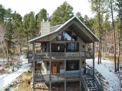 Deadwood, Deadwood/central City, Lead Single Family Home For Sale: 21159 Gilded Mountain