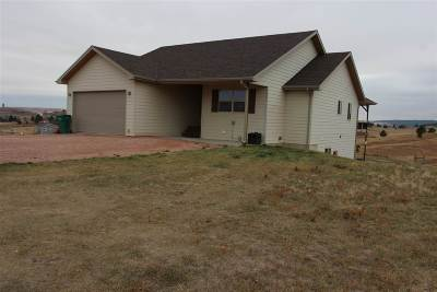 Single Family Home For Sale: 14253 Kassidi Ct.