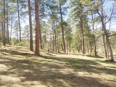 Sturgis SD Residential Lots & Land For Sale: $55,000