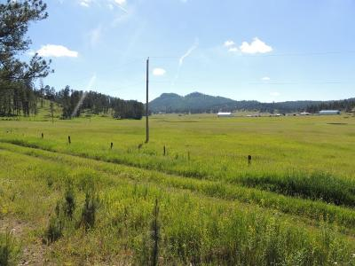 Custer County Residential Lots & Land For Sale: Tract 11 Katherine