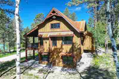 Deadwood, Deadwood/central City, Lead Single Family Home For Sale: 21140 Last Chance