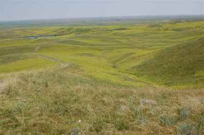 Box Elder SD Residential Lots & Land For Sale: $995,000