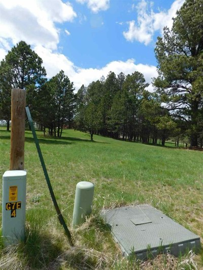 Custer SD Residential Lots & Land Sold: $38,000