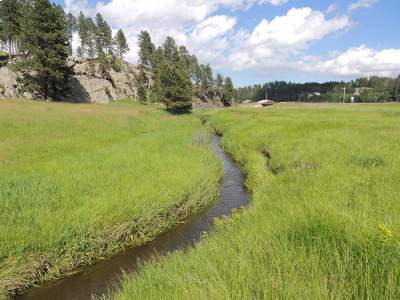Custer County Residential Lots & Land For Sale: Lot B Kemp