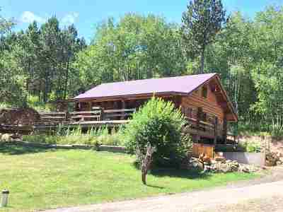 Deadwood SD Single Family Home For Sale: $550,000