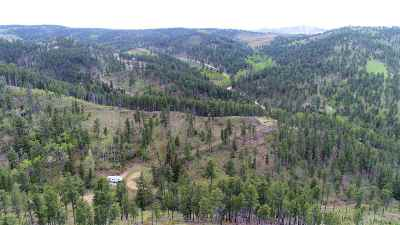 Deadwood, Lead Residential Lots & Land Under Contract-Dont Show: 21076 Two Bit