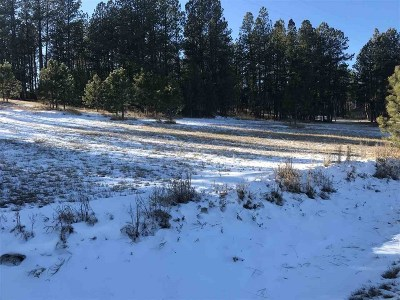 Deadwood Residential Lots & Land For Sale: 22491 Jenny Gulch Rd