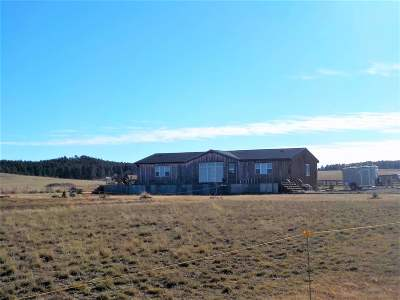 Belle Fourche Single Family Home For Sale: 19060 Plum Creek Ln