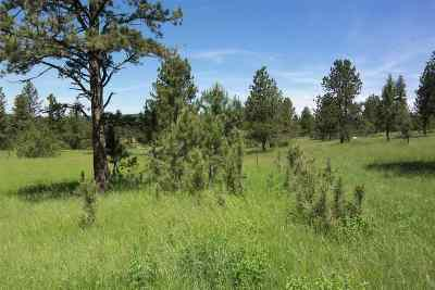 Residential Lots & Land For Sale: Forest Service Rd #397