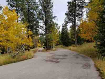 Deadwood, Lead Residential Lots & Land For Sale: 11244 Highway 14a