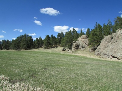 Custer Residential Lots & Land For Sale: Tract 11 Sidney