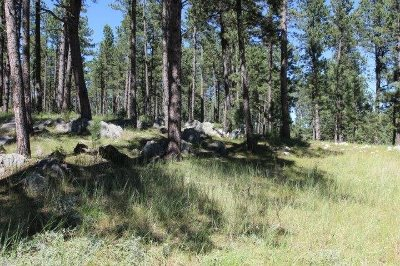 Custer Residential Lots & Land For Sale: 105 Carriage Hill Ct.