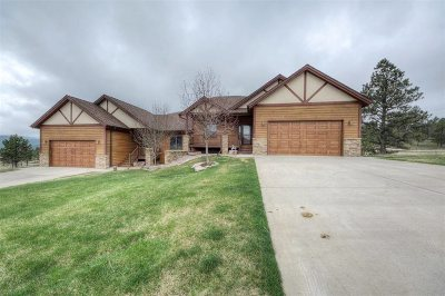 Sturgis SD Single Family Home For Sale: $339,000