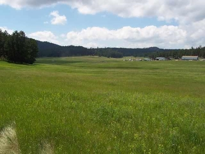 Custer Residential Lots & Land For Sale: 11895 Pleasant Valley Rd.