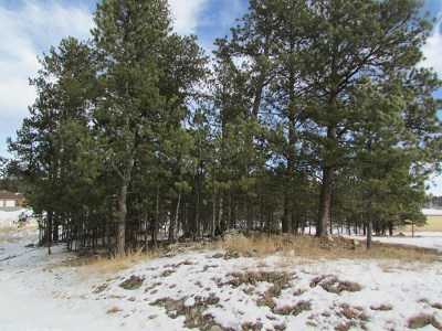 Custer Residential Lots & Land For Sale: 127 Surrey