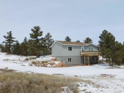 Single Family Home For Sale: 27287 Spirit Canyon