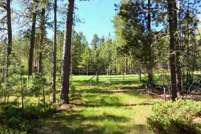Deadwood Residential Lots & Land For Sale: Lot 8 Little Elk Road