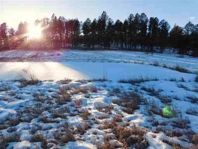 Custer SD Residential Lots & Land For Sale: $96,000