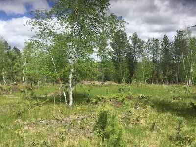 Deadwood, Lead Residential Lots & Land For Sale: Ruby Way