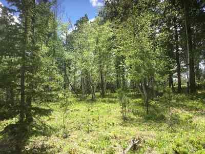 Deadwood, Lead Residential Lots & Land For Sale: Ridgewood Trail